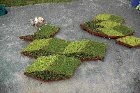 fractal Garden by Leggelewislegge 2