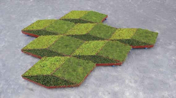 fractal Garden by Leggelewislegge 4