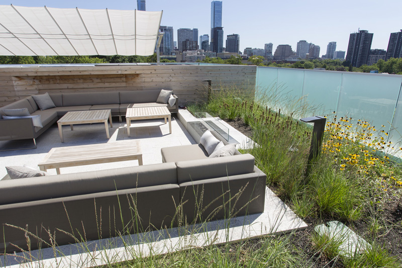Lounge furniture is clustered around a fire pit embedded into the edge of the planting bed.