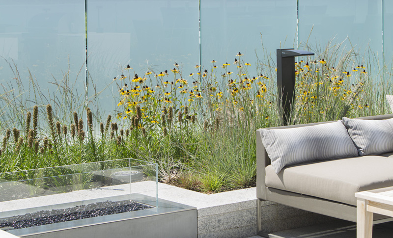 A contemporary outdoor firepit is surrounded by clean-cut walls of white granite. Native planting provides a soft backdrop.