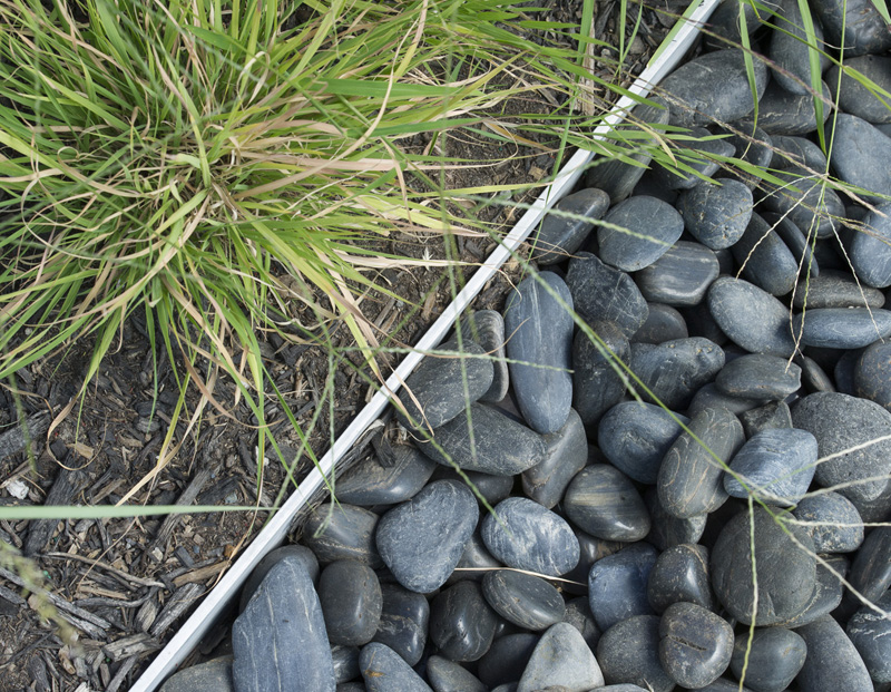 Soft native grasses contrasted with dark pebbles which form a drainage trench along the edge of the roof terrace.