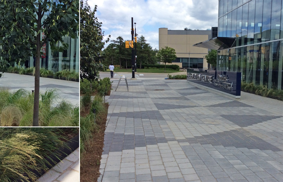 Details of paving and planting surrounding the sales centre